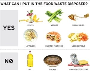 What Kind of Items Should You Avoid Putting in the Garbage Disposal